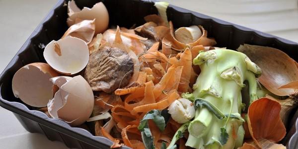 非居民厨余垃圾处理计量收费来了!厨余垃圾怎么处理?